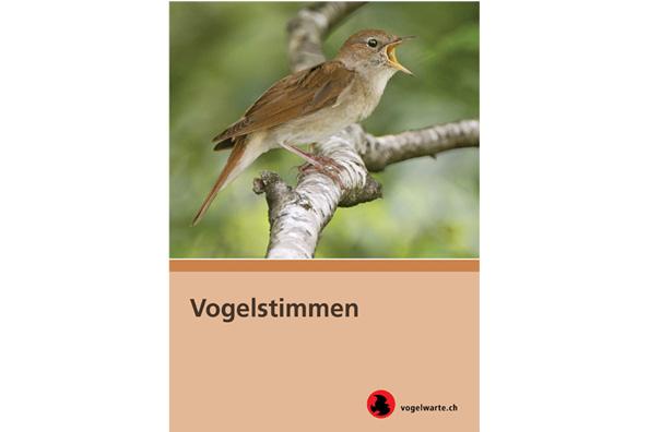 Vogelwarte Ch Vogelstimmen